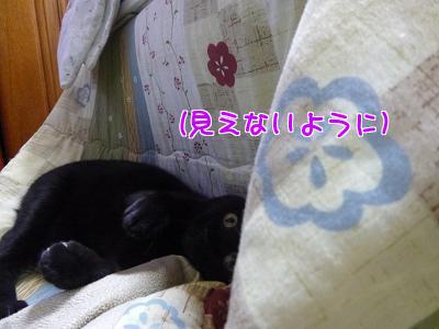 P1110753編集②.jpg