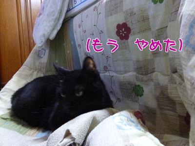 P1110759編集②.jpg