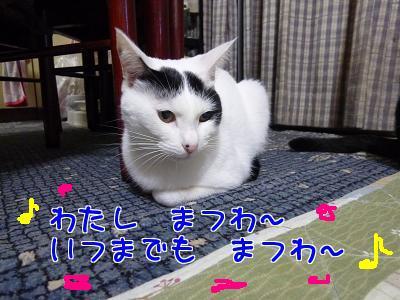 P1120071編集②.JPG