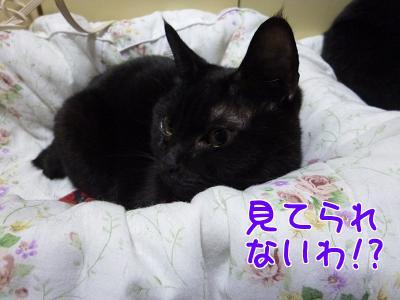 P1120395編集②.jpg