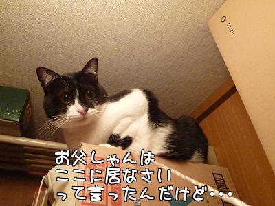 P1140298編集②.JPG