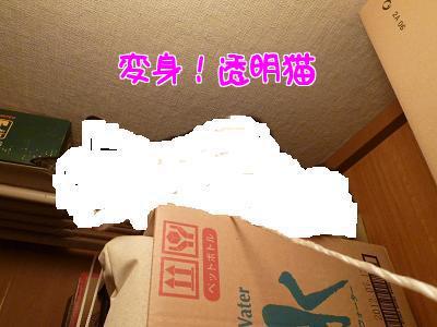 P1140299編集③.JPG