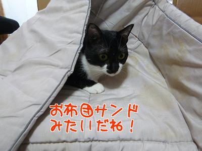 P1150403編集②.jpg