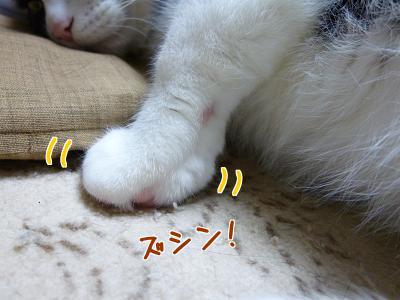 P1150557編集②.jpg