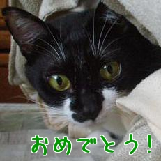 P3260647編集②.jpg