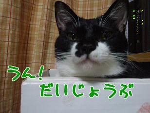 P3290926編集②.jpg