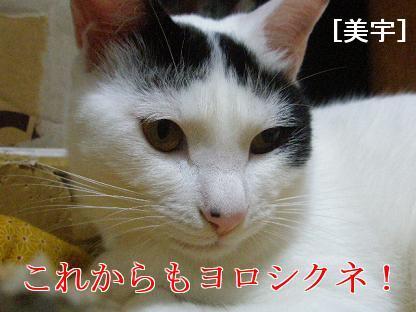 P4060101編集.JPG