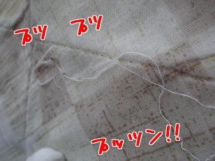 P4232042編集n②.jpg