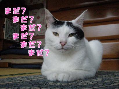 P5032756編集②.jpg