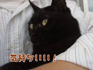 P5052943編集②.jpg