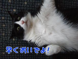 P5093179編集②.jpg