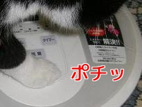 P6144315編集②.jpg