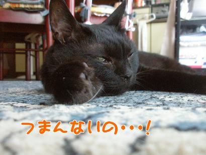 P7105081編集②.jpg