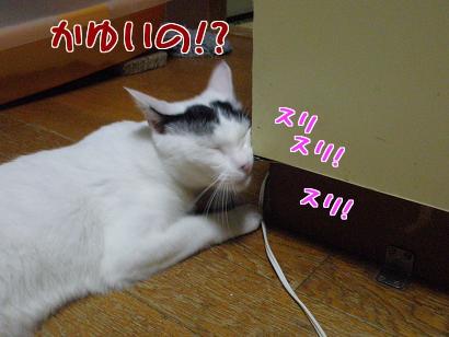 P7175330編集③.jpg