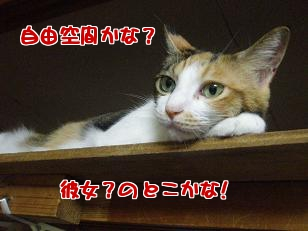 P7305779編集②.jpg