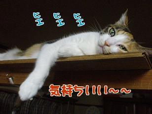 P7305796編集②.jpg