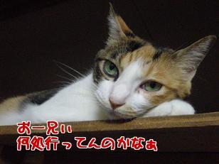 P7305797編集②.jpg