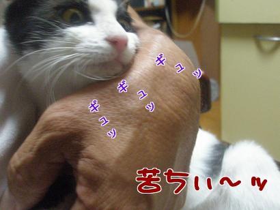 P8290296編集②.jpg